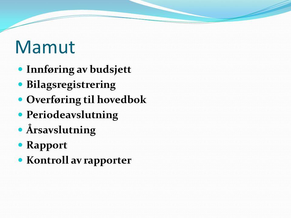 Mamut  Innføring av budsjett  Bilagsregistrering  Overføring til hovedbok  Periodeavslutning  Årsavslutning  Rapport  Kontroll av rapporter