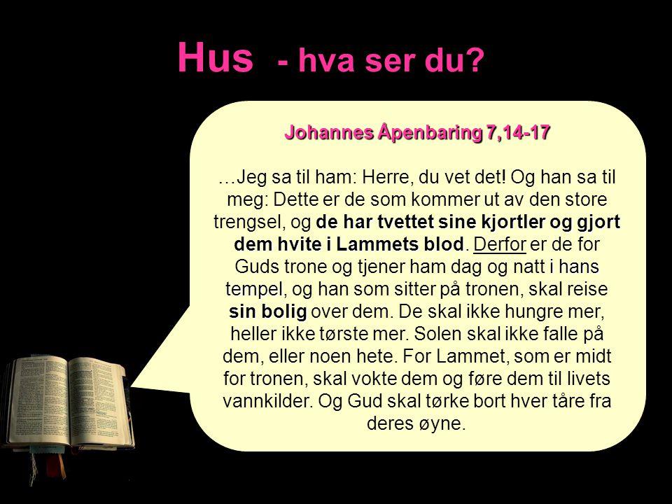 Hus - hva ser du? Johannes Åpenbaring 7,14-17 de har tvettet sine kjortler og gjort dem hvite i Lammets blod. i hans tempel sin bolig …Jeg sa til ham: