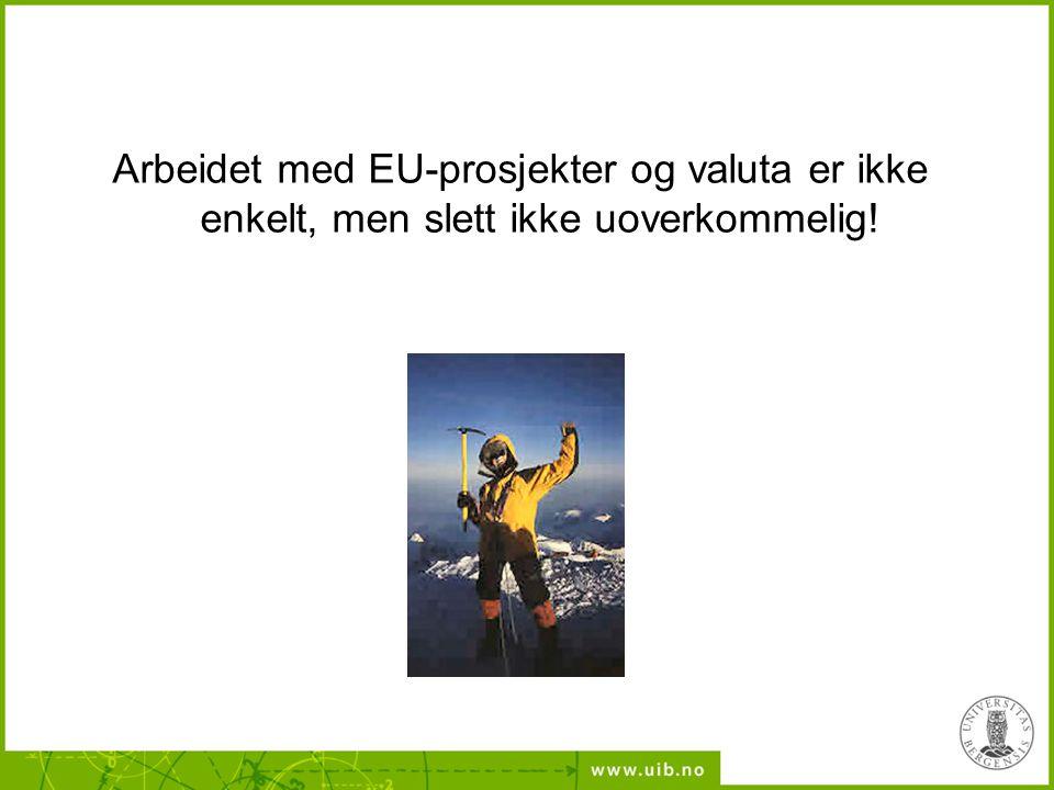 Arbeidet med EU-prosjekter og valuta er ikke enkelt, men slett ikke uoverkommelig!