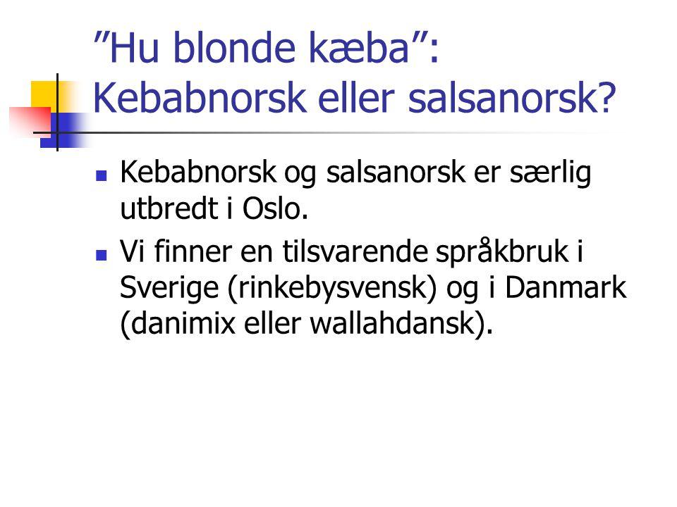 """""""Hu blonde kæba"""": Kebabnorsk eller salsanorsk?  Kebabnorsk og salsanorsk er særlig utbredt i Oslo.  Vi finner en tilsvarende språkbruk i Sverige (ri"""