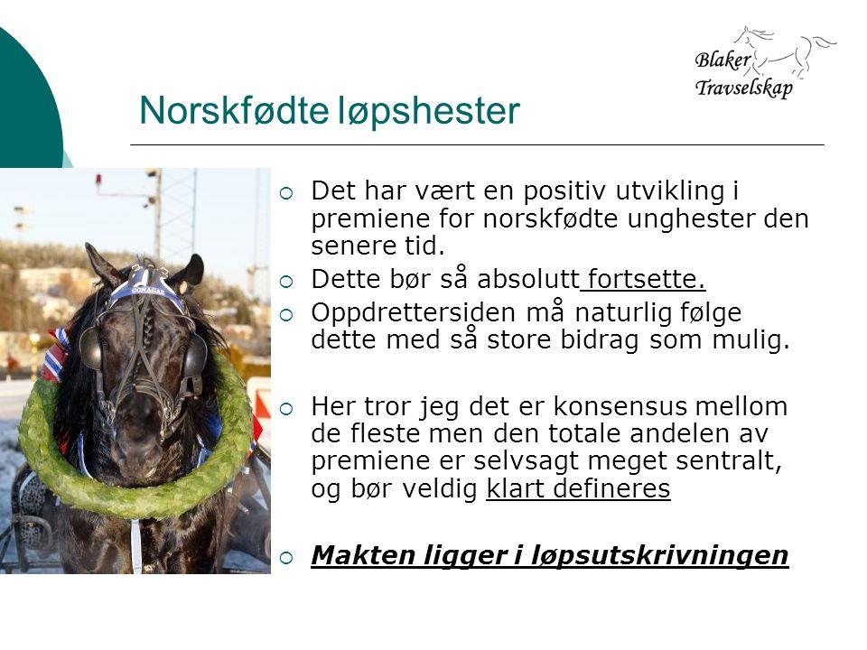 Norskfødte løpshester  Det har vært en positiv utvikling i premiene for norskfødte unghester den senere tid.