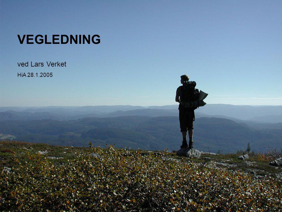 VEGLEDNING ved Lars Verket HiA 28.1.2005
