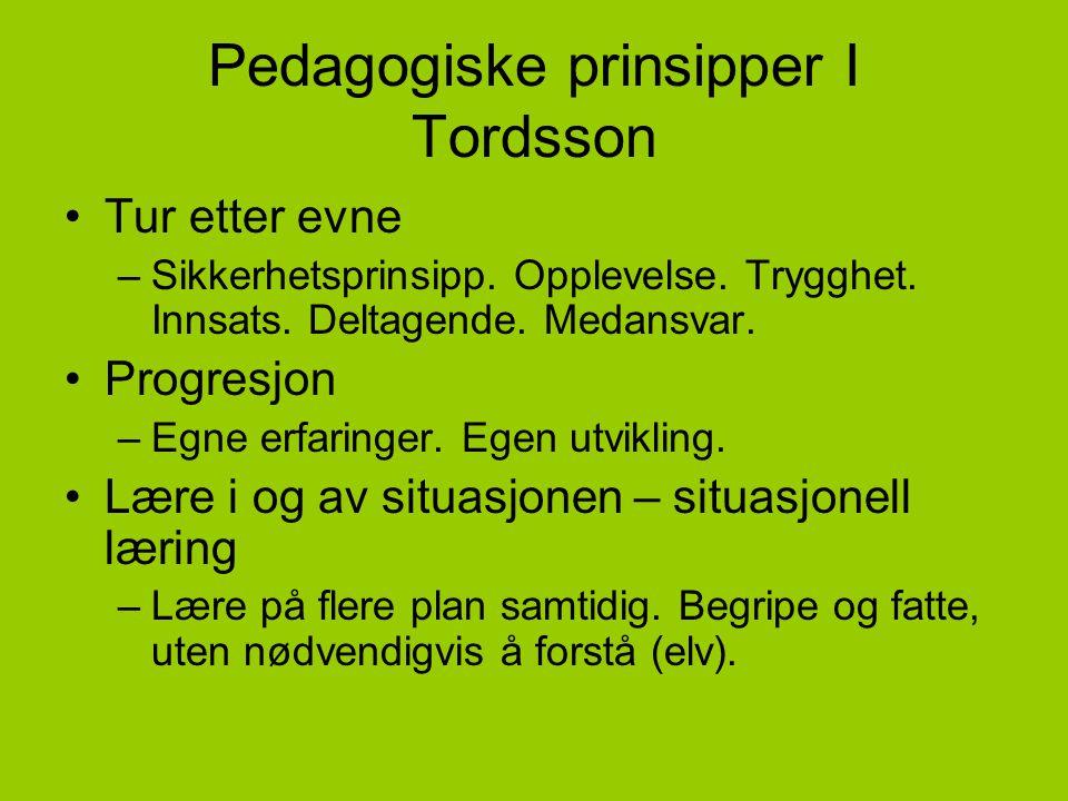 Pedagogiske prinsipper I Tordsson •Tur etter evne –Sikkerhetsprinsipp. Opplevelse. Trygghet. Innsats. Deltagende. Medansvar. •Progresjon –Egne erfarin