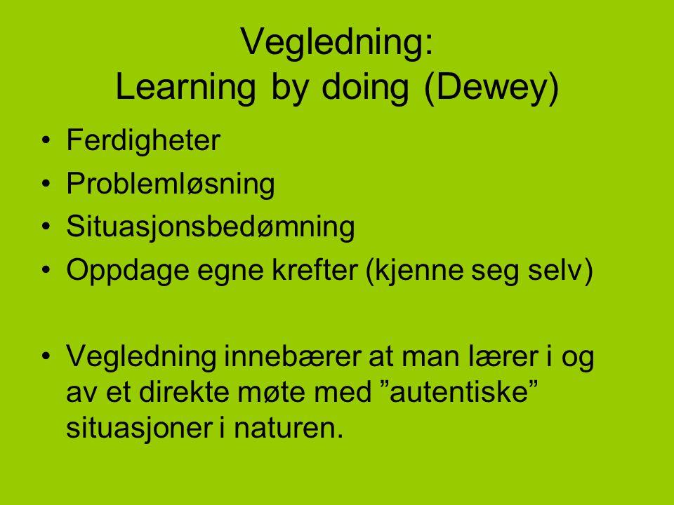Vegledning: Learning by doing (Dewey) •Ferdigheter •Problemløsning •Situasjonsbedømning •Oppdage egne krefter (kjenne seg selv) •Vegledning innebærer