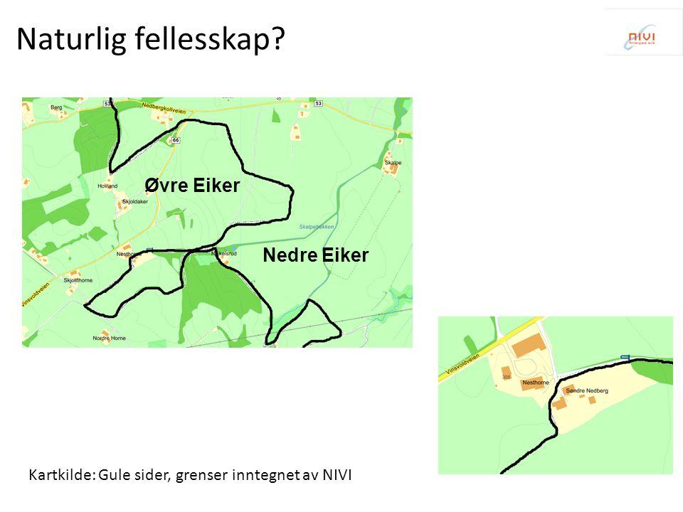 Typeproblemer i Hedmark 1.Ett flerkommunalt byområde av type 1: Regionsenter m/tettstedsoppsplitting (Hamar) 2.Tre integrerte pendlingsregioner: (Kongsvinger, Elverum, Tynset) 3.17k< 15.000 innbyggere, noen uten og noen med betydelig avstandsproblematikk 4.Så godt som alle kommuner er berørt av uhensiktsmessige avgrensninger 5.Fylkesoppdeling av Mjøsregionen 6.Fylkestilhørighet for Glåmdalsregionen og Os