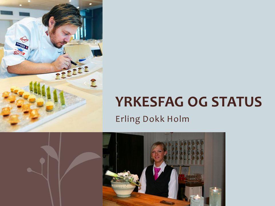 Erling Dokk Holm YRKESFAG OG STATUS