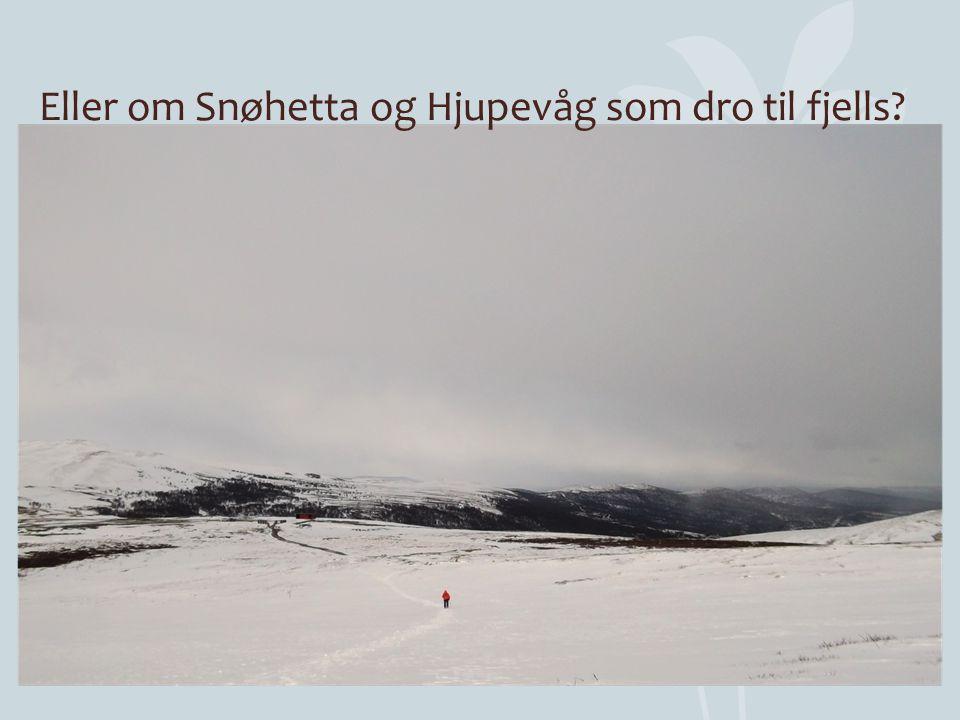 Eller om Snøhetta og Hjupevåg som dro til fjells?
