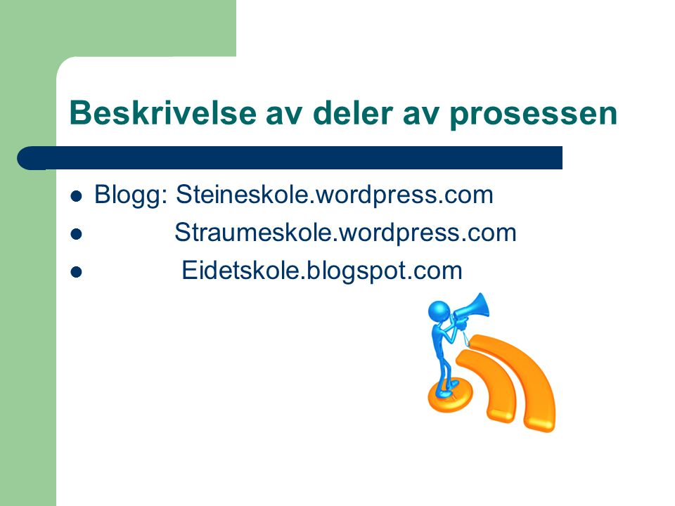 Beskrivelse av deler av prosessen  Blogg: Steineskole.wordpress.com  Straumeskole.wordpress.com  Eidetskole.blogspot.com
