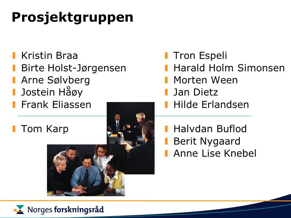 Prosjektgruppen Kristin Braa Birte Holst-Jørgensen Arne Sølvberg Jostein Håøy Frank Eliassen Tom Karp Tron Espeli Harald Holm Simonsen Morten Ween Jan