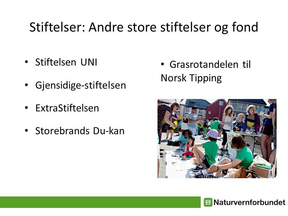 Stiftelser: Andre store stiftelser og fond • Stiftelsen UNI • Gjensidige-stiftelsen • ExtraStiftelsen • Storebrands Du-kan • Grasrotandelen til Norsk