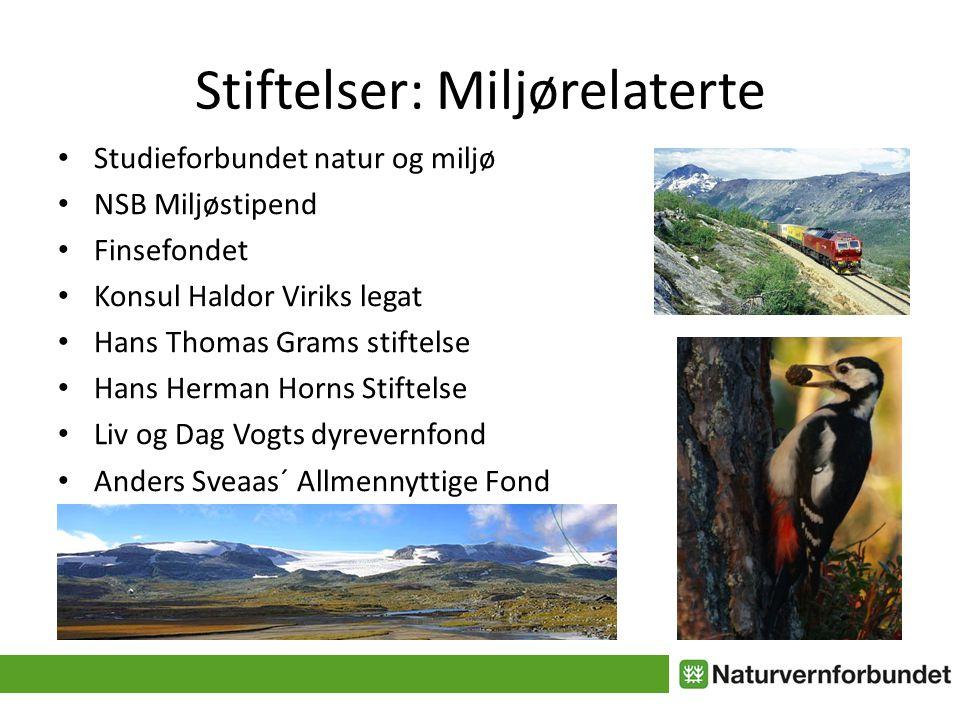 """Presentasjon """"Naturvernskolen: Hvordan skaffe penger til lokalt ..."""