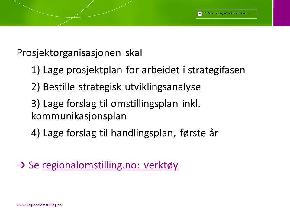 Prosjektorganisasjonen skal 1) Lage prosjektplan for arbeidet i strategifasen 2) Bestille strategisk utviklingsanalyse 3) Lage forslag til omstillings