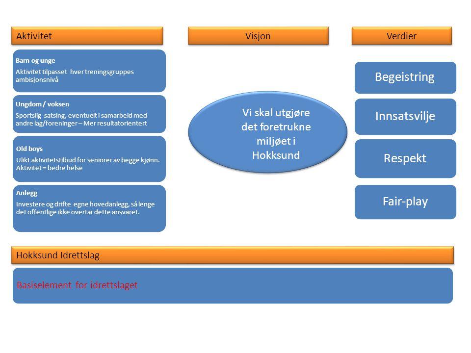 Organisering Hovedstyre UndergrupperAnleggEldres foreningProsjektdeltagelse