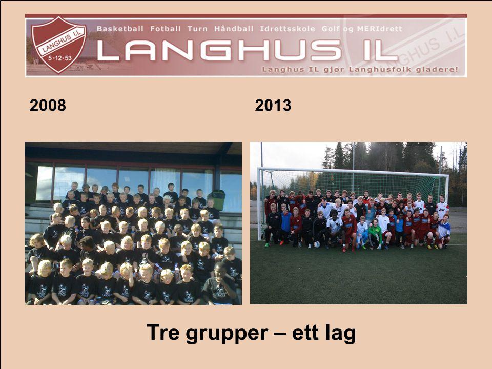20082013 Tre grupper – ett lag