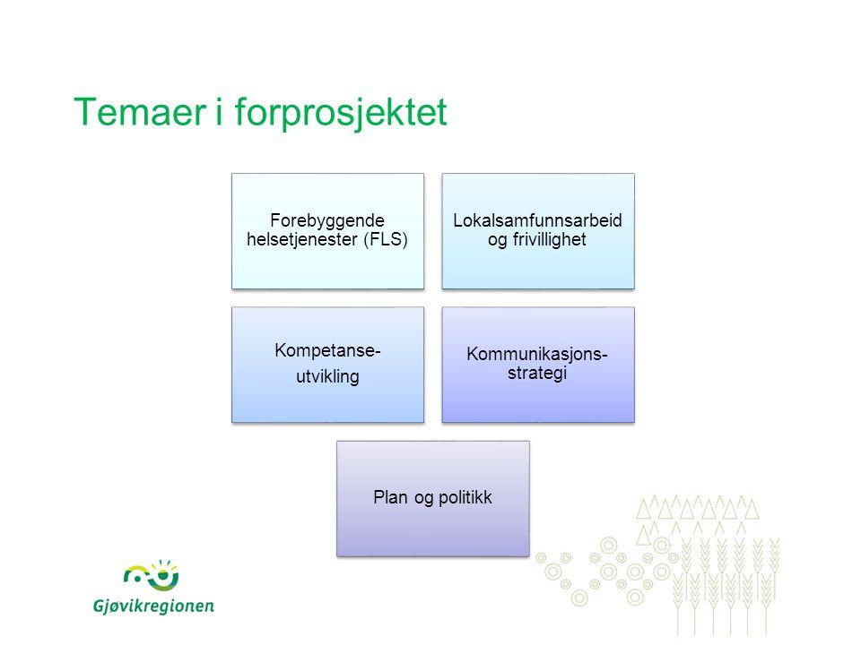 Temaer i forprosjektet Forebyggende helsetjenester (FLS) Lokalsamfunnsarbeid og frivillighet Kompetanse- utvikling Kommunikasjons- strategi Plan og po