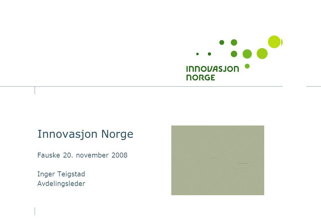 Innovasjon Norge Fauske 20. november 2008 Inger Teigstad Avdelingsleder