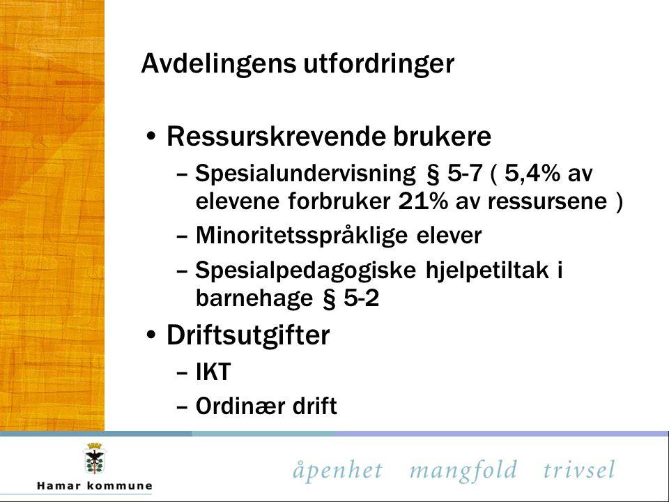 Avdelingens utfordringer •Ressurskrevende brukere –Spesialundervisning § 5-7 ( 5,4% av elevene forbruker 21% av ressursene ) –Minoritetsspråklige elev