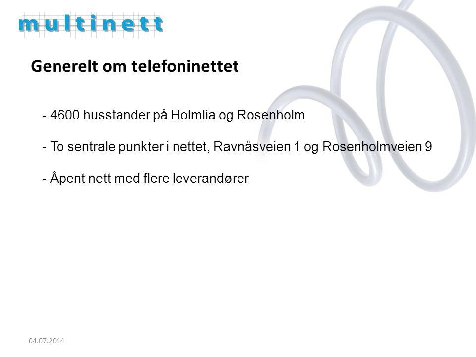 Generelt om telefoninettet - 4600 husstander på Holmlia og Rosenholm - To sentrale punkter i nettet, Ravnåsveien 1 og Rosenholmveien 9 - Åpent nett med flere leverandører 04.07.2014