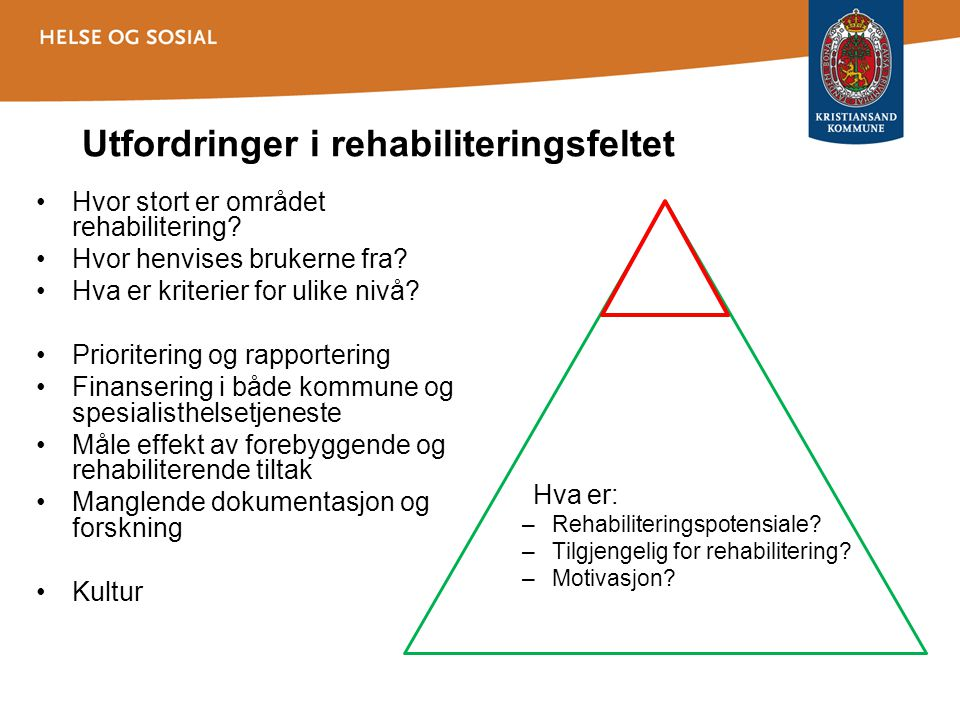 Utfordringer i rehabiliteringsfeltet •Hvor stort er området rehabilitering? •Hvor henvises brukerne fra? •Hva er kriterier for ulike nivå? •Prioriteri
