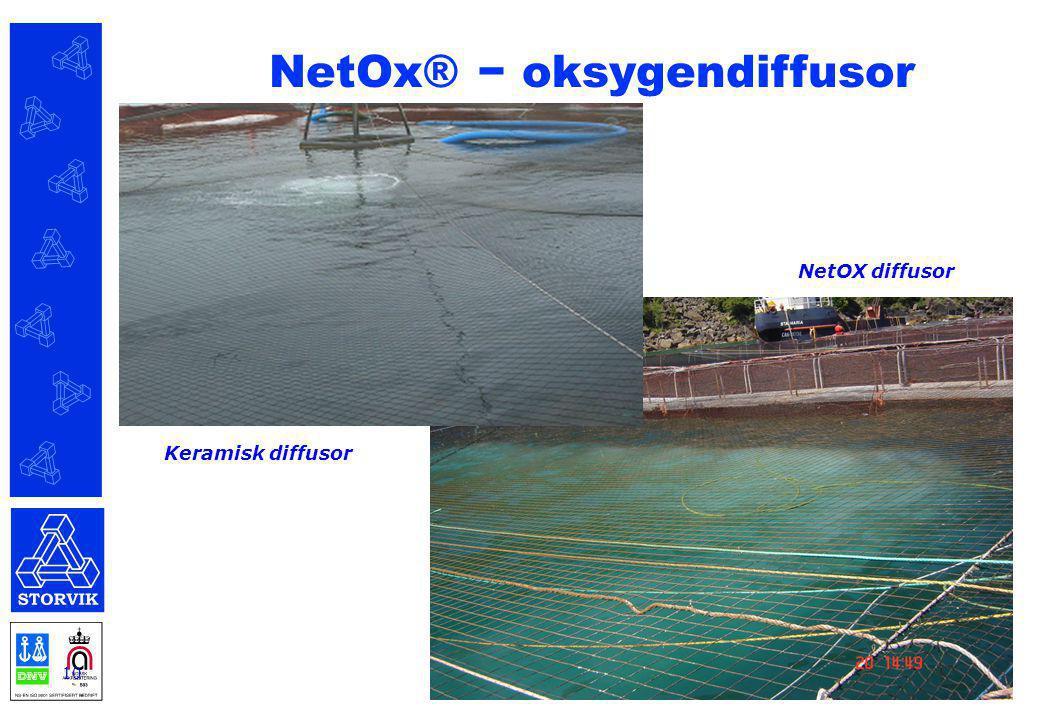 10 Keramisk diffusor NetOX diffusor NetOx® − oksygendiffusor