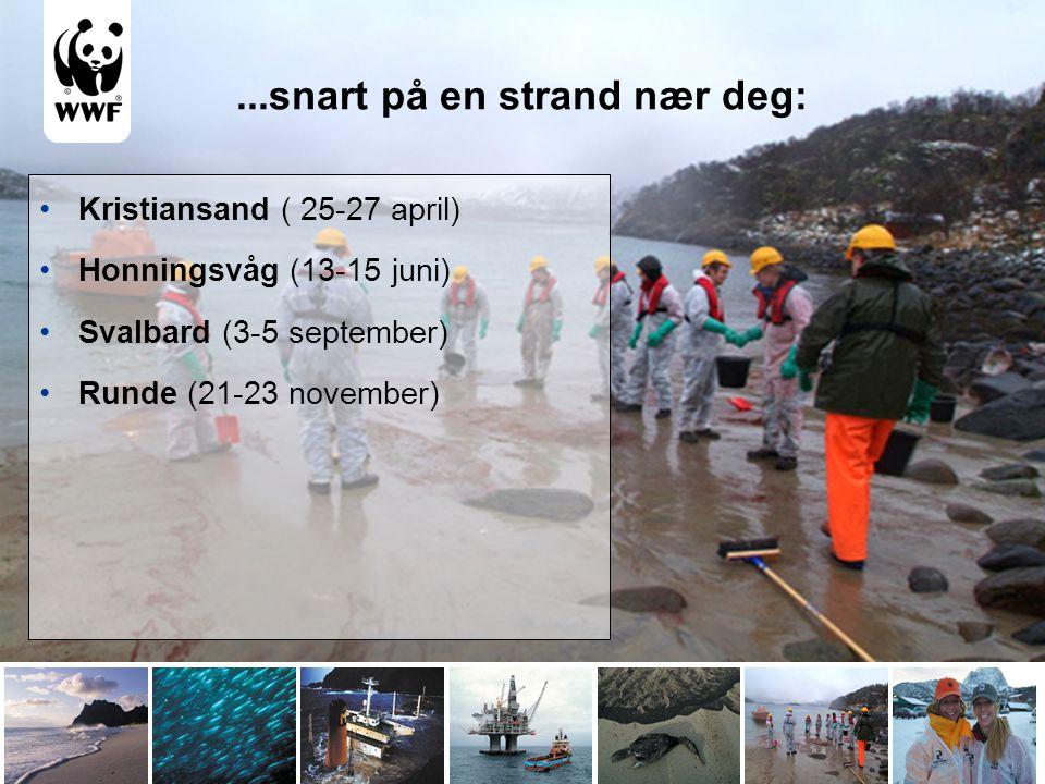 ...snart på en strand nær deg: •Kristiansand ( 25-27 april) •Honningsvåg (13-15 juni) •Svalbard (3-5 september) •Runde (21-23 november)