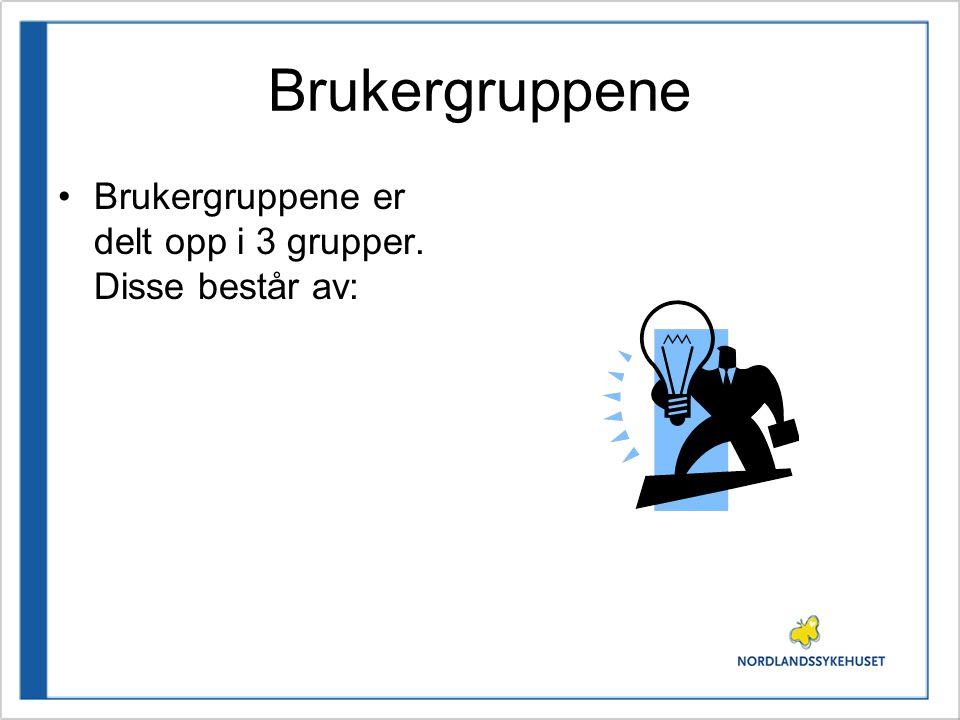 Brukergruppene •Brukergruppene er delt opp i 3 grupper. Disse består av: