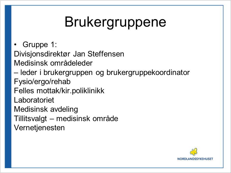 Brukergruppene •Gruppe 1: Divisjonsdirektør Jan Steffensen Medisinsk områdeleder – leder i brukergruppen og brukergruppekoordinator Fysio/ergo/rehab F