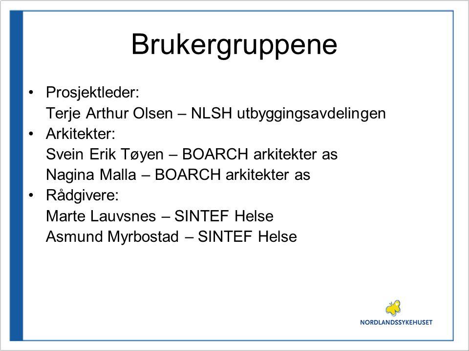 Brukergruppene •Prosjektleder: Terje Arthur Olsen – NLSH utbyggingsavdelingen •Arkitekter: Svein Erik Tøyen – BOARCH arkitekter as Nagina Malla – BOAR