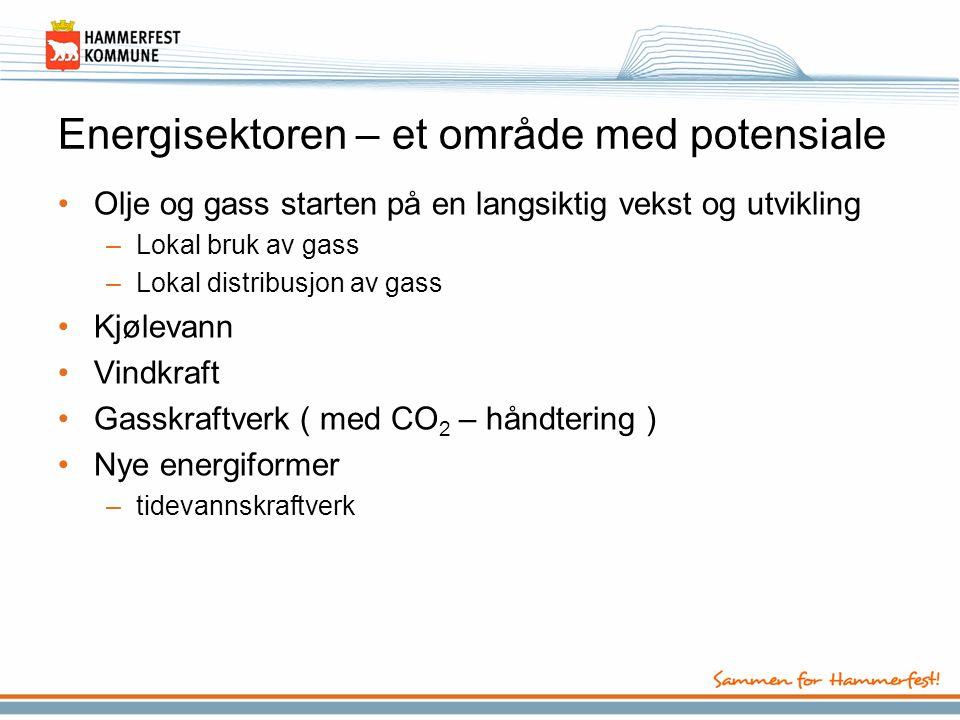 Energisektoren – et område med potensiale •Olje og gass starten på en langsiktig vekst og utvikling –Lokal bruk av gass –Lokal distribusjon av gass •K