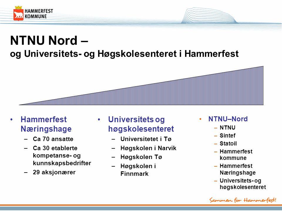 NTNU Nord – og Universitets- og Høgskolesenteret i Hammerfest •Hammerfest Næringshage –Ca 70 ansatte –Ca 30 etablerte kompetanse- og kunnskapsbedrifte