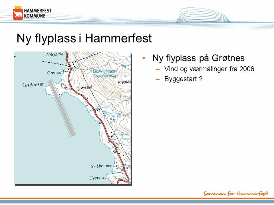 Ny flyplass i Hammerfest •Ny flyplass på Grøtnes –Vind og værmålinger fra 2006 –Byggestart ?