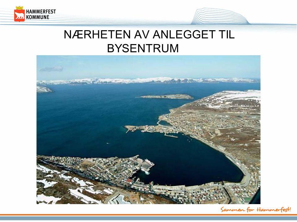 Hammerfest – en øykommune •Innbyggere –9.367 personer 01.07.06 •Areal –863 km 2, på 3 bebodde øyer •Næringsliv –fiskeri/oppdrett, offentlig og privat service, reiseliv, petroleum •Regionsenter –kommunikasjoner, handel/service, sykehus, petroleum, fiskeindustri, utdanning, kompetansemiljø