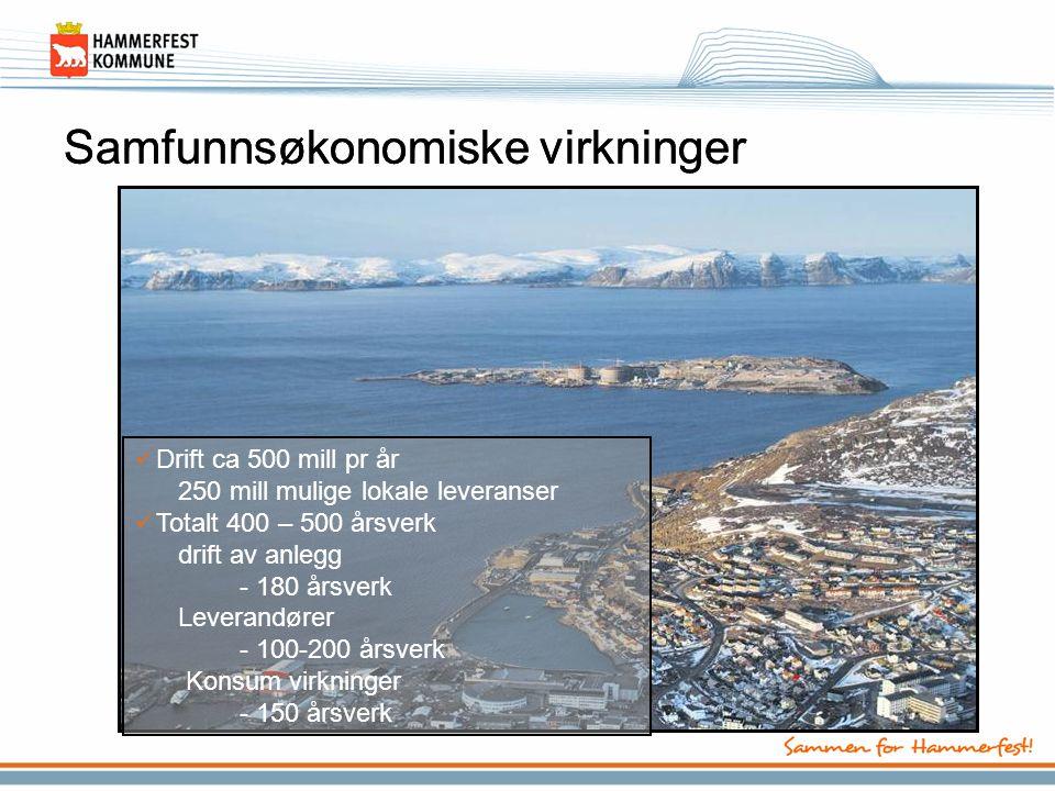 Barentshavet •Fortsatt petroleumsaktivitet –Snøhvit LNG igangsettes –Goliat som oljeprodusent –Ilandføring av olje –Oljen fra Snøhvit –Mer gass gir Snøhvit II og III –19.