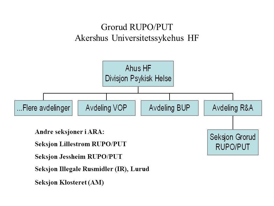 •Forprosjekt på Grorud DPS i 2005: etablering av Ruspoliklinikk - ansettelser høsten 2005 og januar 2006 •Etablert med 5 ansatte fra 01.01.06: - økt t
