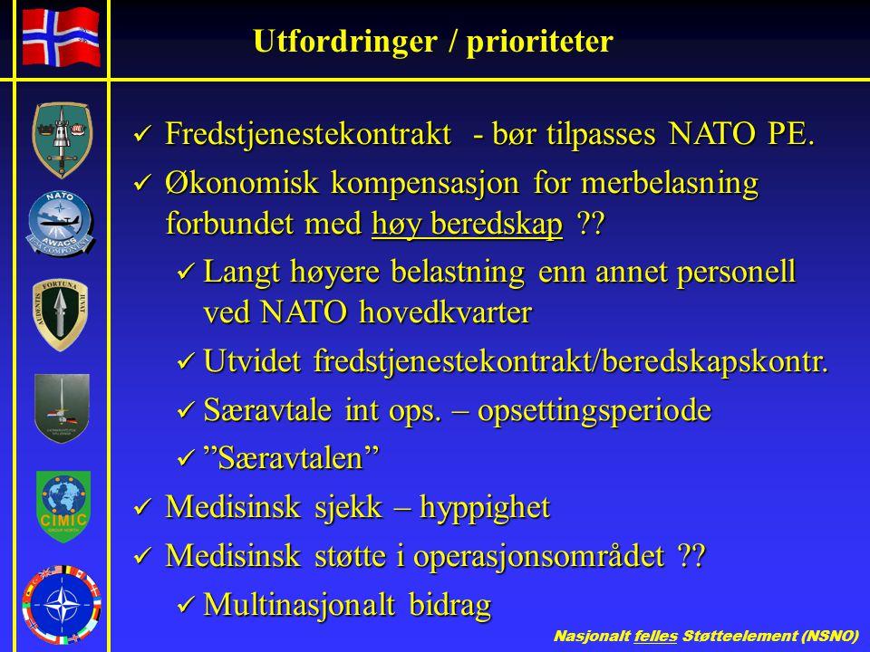 Nasjonalt felles Støtteelement (NSNO) Utfordringer / prioriteter  Fredstjenestekontrakt - bør tilpasses NATO PE.