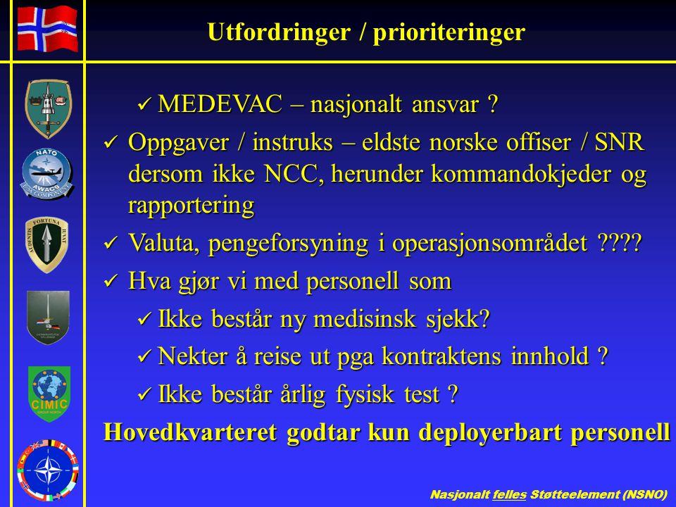 Nasjonalt felles Støtteelement (NSNO) Utfordringer / prioriteringer  MEDEVAC – nasjonalt ansvar .