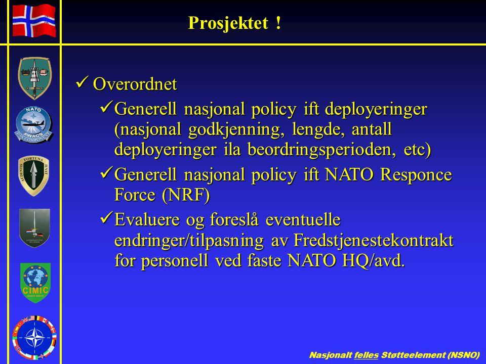 Nasjonalt felles Støtteelement (NSNO) Prosjektet .