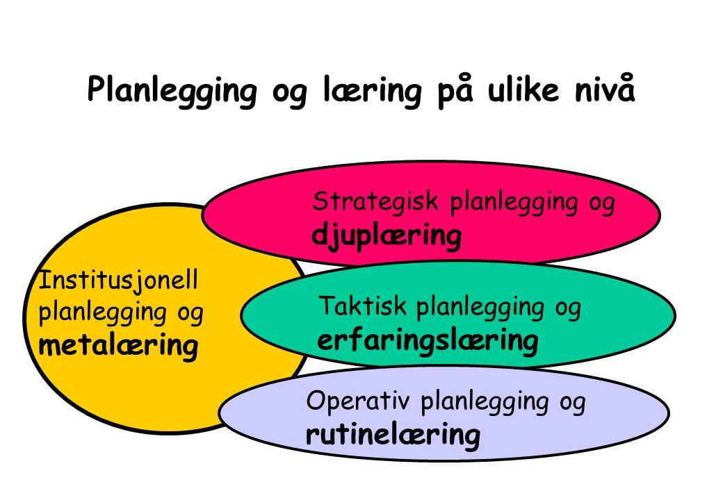 Planlegging og læring på ulike nivå Strategisk planlegging og djuplæring Taktisk planlegging og erfaringslæring Institusjonell planlegging og metalæring Operativ planlegging og rutinelæring