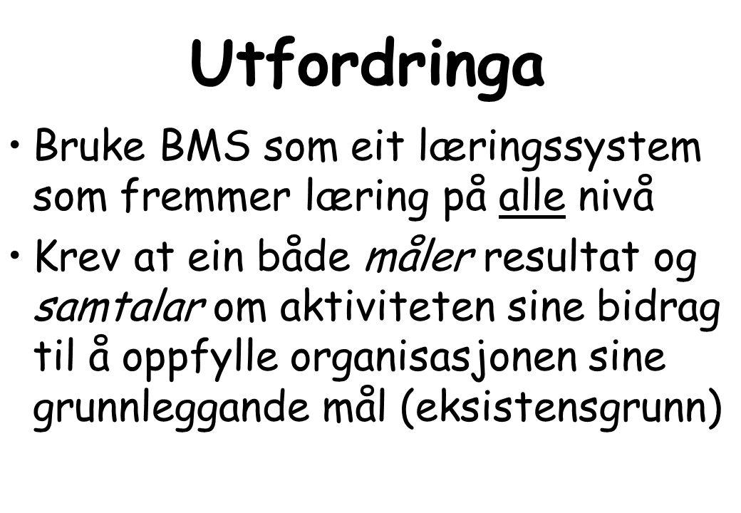 Utfordringa •Bruke BMS som eit læringssystem som fremmer læring på alle nivå •Krev at ein både måler resultat og samtalar om aktiviteten sine bidrag til å oppfylle organisasjonen sine grunnleggande mål (eksistensgrunn)