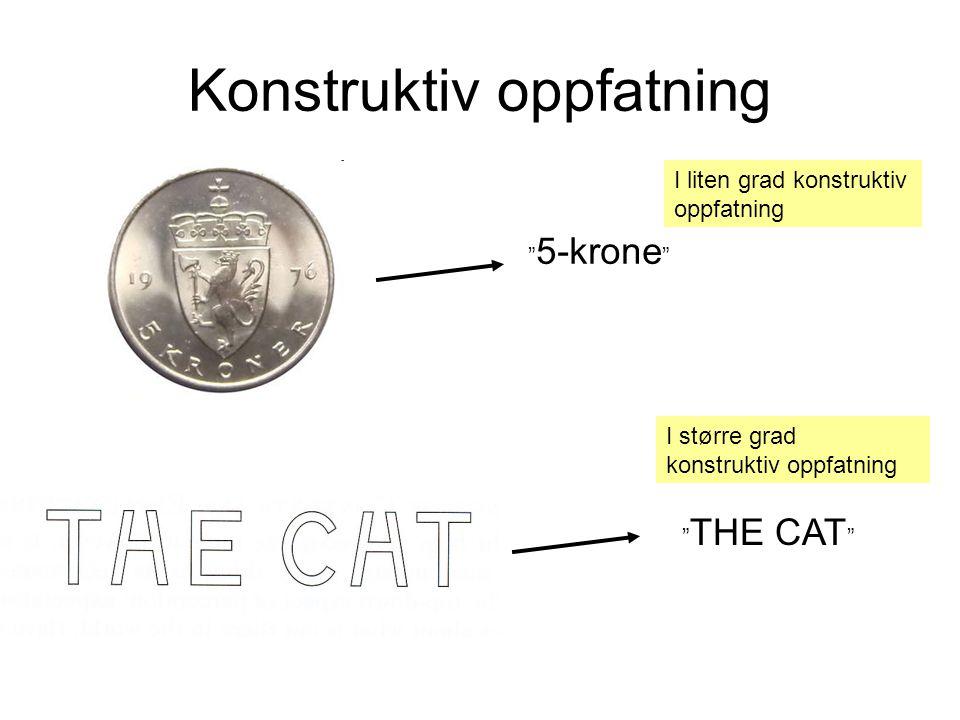 """Konstruktiv oppfatning """" 5-krone """" I liten grad konstruktiv oppfatning """" THE CAT """" I større grad konstruktiv oppfatning"""