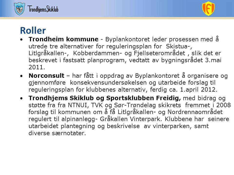 Roller •Trondheim kommune - Byplankontoret leder prosessen med å utrede tre alternativer for reguleringsplan for Skistua-, Litlgråkallen-, Kobberdamme
