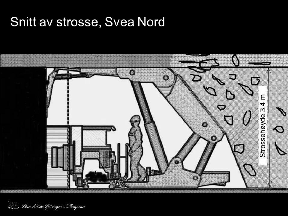 Snitt av strosse, Svea Nord