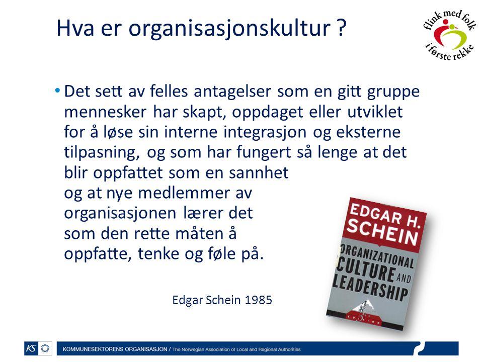 Hva er organisasjonskultur .