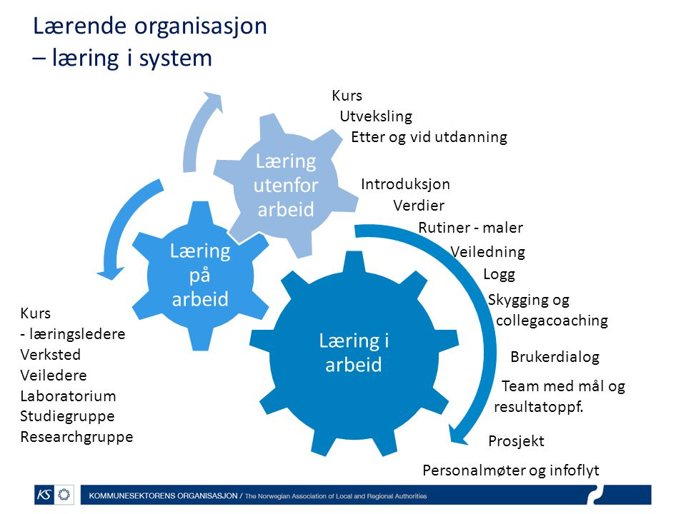 Lærende organisasjon – læring i system Læring i arbeid Læring på arbeid Læring utenfor arbeid Veiledning Introduksjon Logg Skygging og collegacoaching Team med mål og resultatoppf.