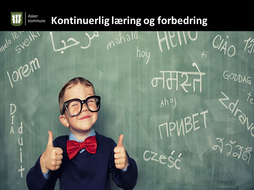 Kontinuerlig læring og forbedring