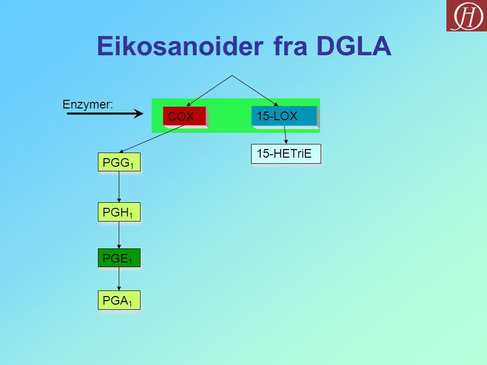 Eikosanoider fra DGLA COX PGG 1 PGH 1 PGE 1 PGA 1 Enzymer: 15-LOX 15-HETriE