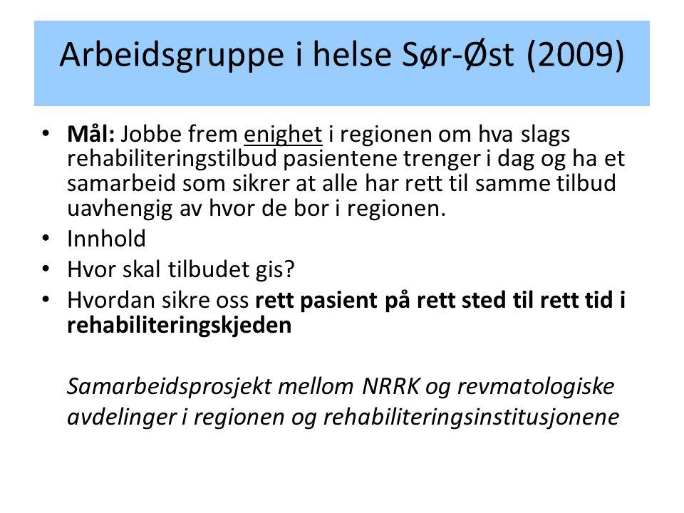 Arbeidsgruppe i helse Sør-Øst (2009) • Mål: Jobbe frem enighet i regionen om hva slags rehabiliteringstilbud pasientene trenger i dag og ha et samarbeid som sikrer at alle har rett til samme tilbud uavhengig av hvor de bor i regionen.