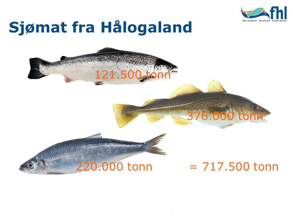 Sjømat fra Hålogaland 121.500 tonn 376.000 tonn 220.000 tonn= 717.500 tonn