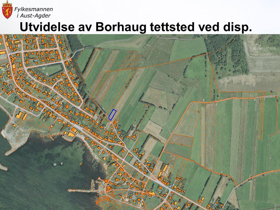 Landbruksavdelingen19 Utvidelse av Borhaug tettsted ved disp.