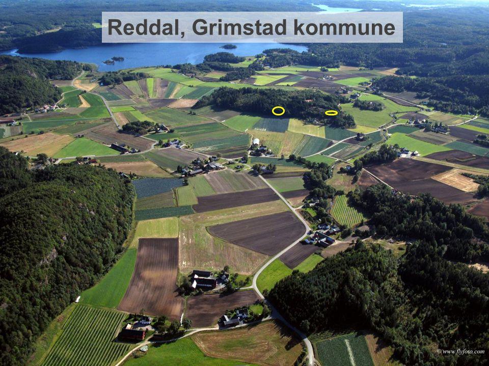 Reddal, Grimstad kommune